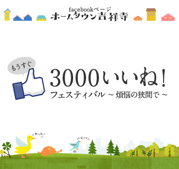 facebook3000